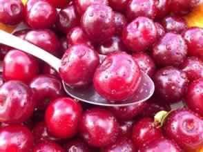 Cerisier Crimson Passion
