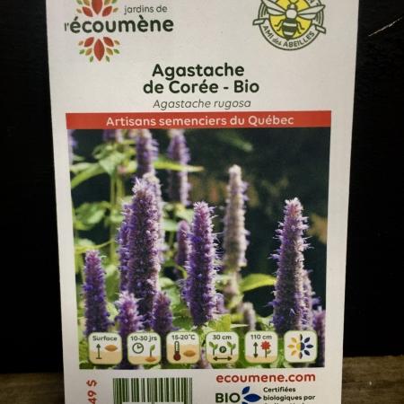 Écoumène - Agastache de Corée - Bio (200 semences)