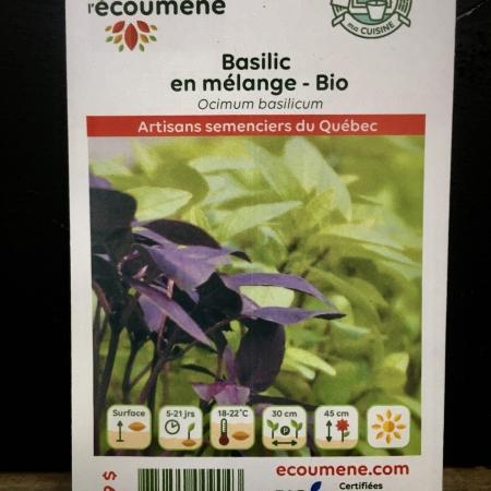 Écoumène - Basilic en mélange - Bio (175 semences)