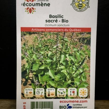 Écoumène - Basilic sacré - Bio (200 semences)
