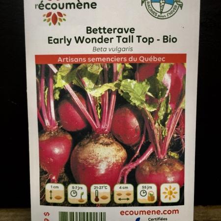 Écoumène - Betterave Early Wonder Tall Top - Bio (150 semences)
