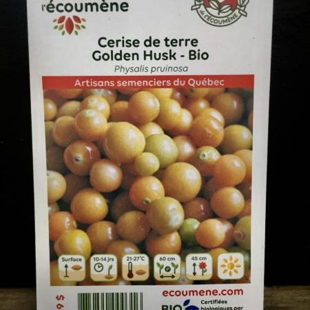Écoumène - Cerise de terre Golden Husk - Bio (50 semences)