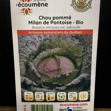 Écoumène - Chou pommé Milan de Pontoise - Bio (100 semences)