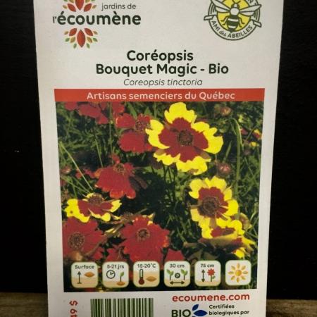 Écoumène - Coréopsis Bouquet Magic - Bio (200 semences)