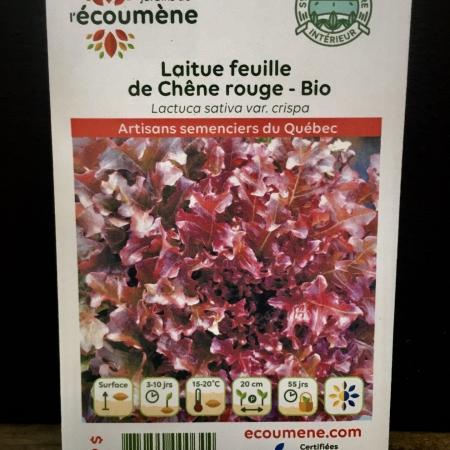 Écoumène - Laitue feuille de Chêne rouge - Bio (600 semences)