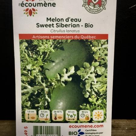Écoumène - Melon Sweet Siberian - Bio (25 semences)