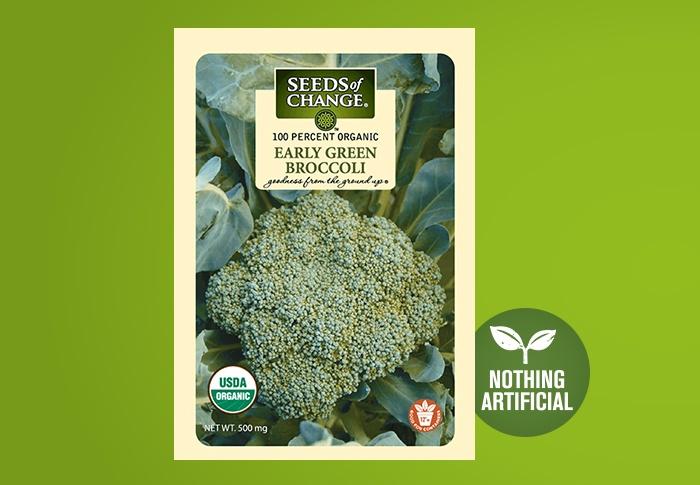 SOC Broccoli Early Green BIO